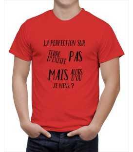 T-shirt homme la perfection n'existe pas mais d'ou je viens